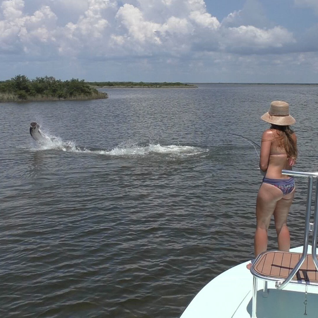 Tarpon Fishing Charter Homosassa Florida
