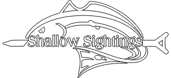 Shallow Sightings