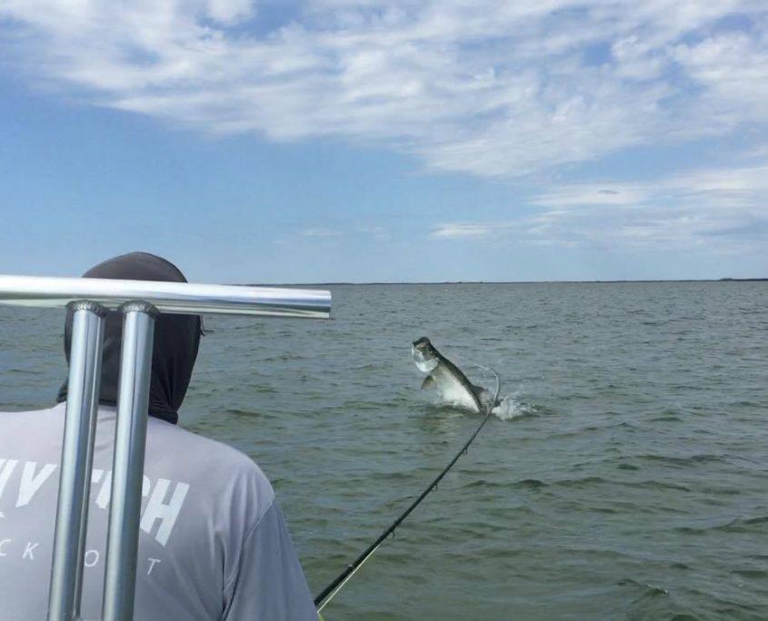 Florida Tarpon fishing