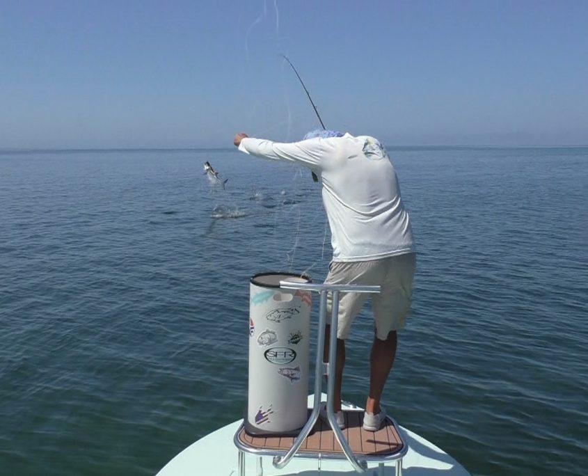 Tarpon Fly Fishing Guide Florida