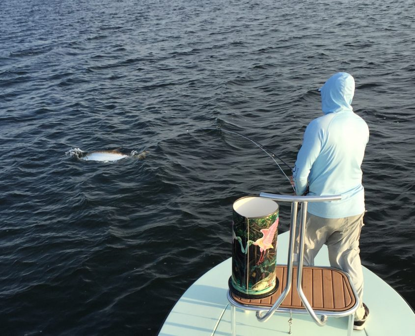 Tarpon fishing guide florida