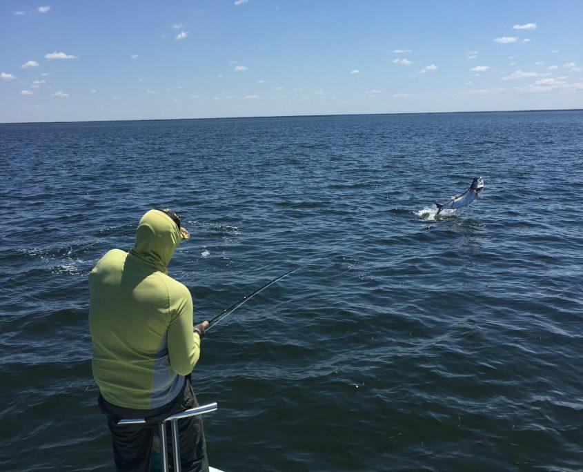 Tarpon fly fishing charters