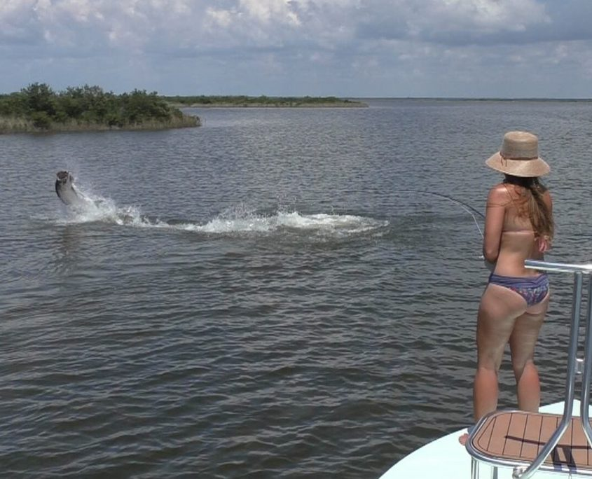 Tarpon Fishing Charter Homosassa Florida