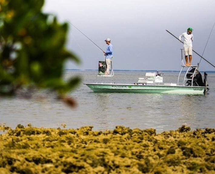 Fly fishing guide crystal river florida